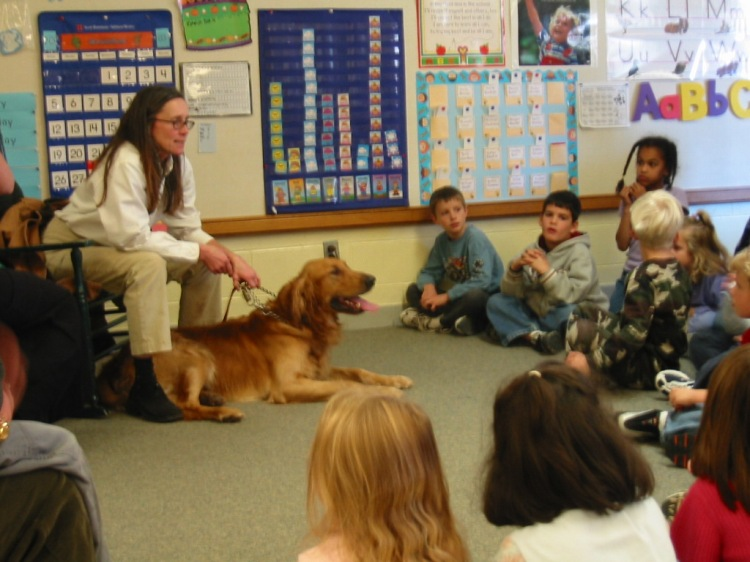 Kindergartners seated on the floor in their classroom learning from an SPCA staff member who has brought a large, calm dog with her.
