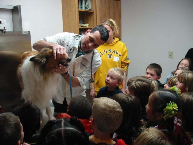 Veterinarian showing a Collie's teeth to kndergartners.